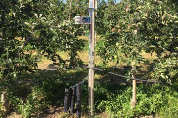 Station pour mesurer l'humidité du sol