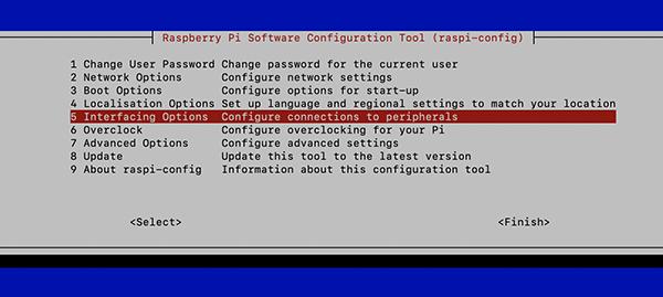 Raspberry pi4 interface option